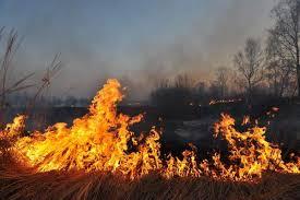 Не сжигайте траву и мусор! Это может привести к пожару!