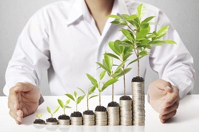 О развитии малого и среднего бизнеса в 2020 году