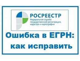 Сотрудники Вологодского Росреестра проконсультируют вологжан как исправить ошибки в ЕГРН