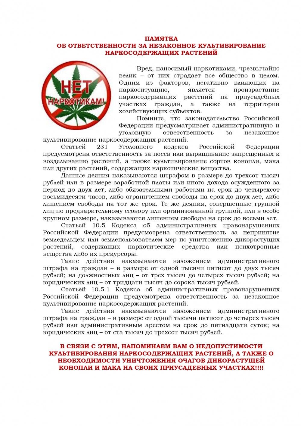 Какая уголовная ответственность за марихуану где купить семена марихуаны
