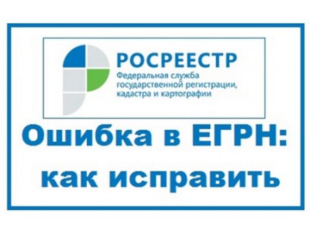 Прямая линия регионального Управления Росреестра: «О порядке исправления ошибок в реестре недвижимости»