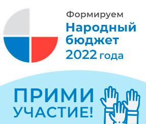 Народный бюджет 2022 года