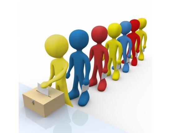 Общероссийская тренировка по проведению дистанционного электронного голосования