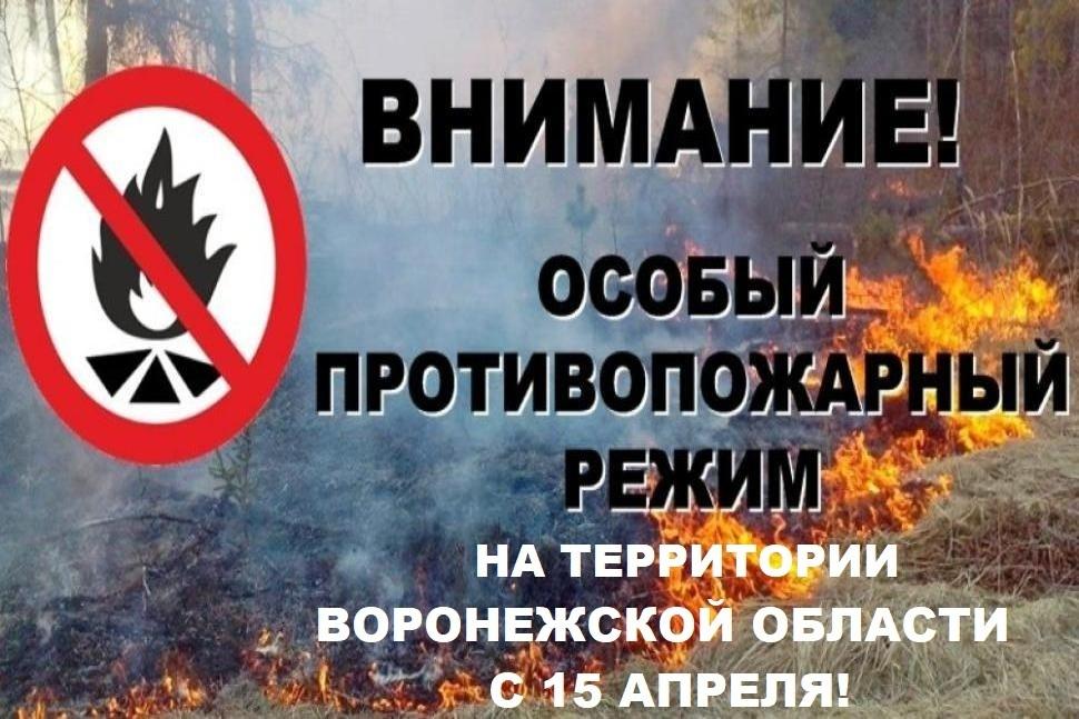 С 15 апреля 2021 года постановлением правительства Воронежской области устанавливается особый противопожарный режим