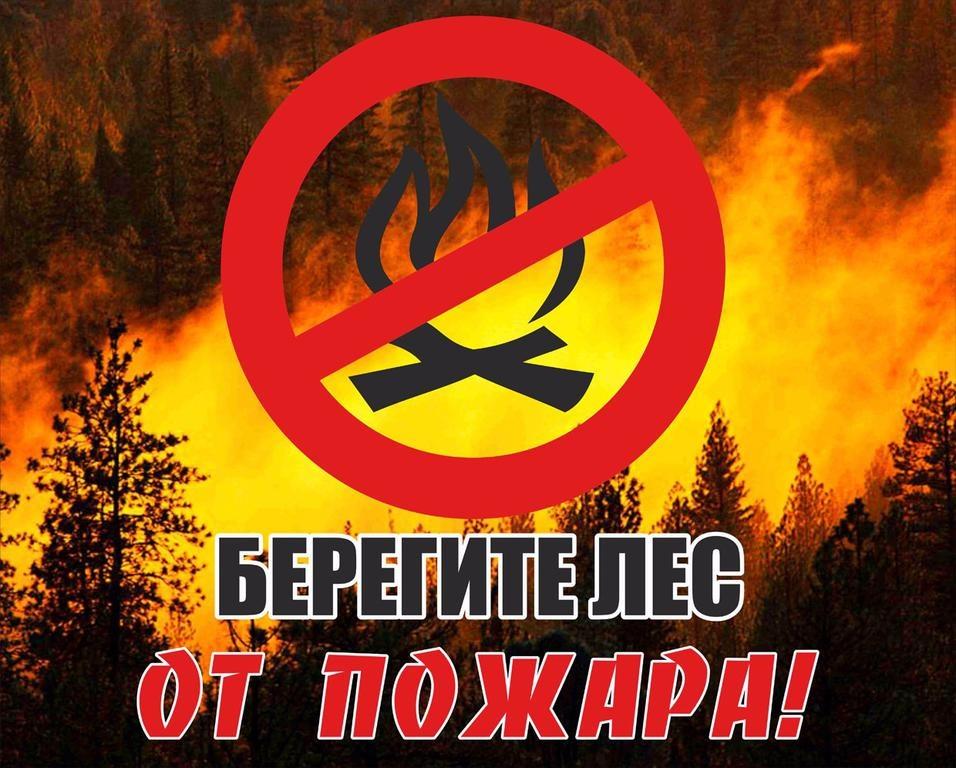 Лесные пожары!!!