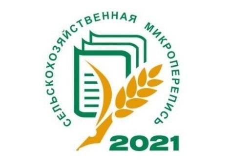 С 1 по 30 августа 2021 года в нашей стране, в том числе и в Челябинской области пройдет первая в истории сельскохозяйственная микроперепись.