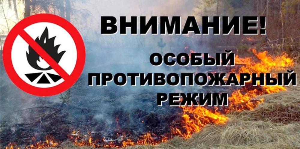 особый противопожарный режим введен на территории Вологодской области с 21.04.2021 по 11.05.2021