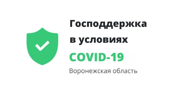 Господдержка в условиях распространения COVID-19