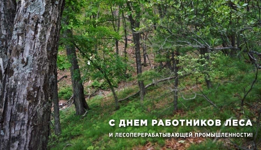 «День работников леса и лесоперерабатывающей промышленности»