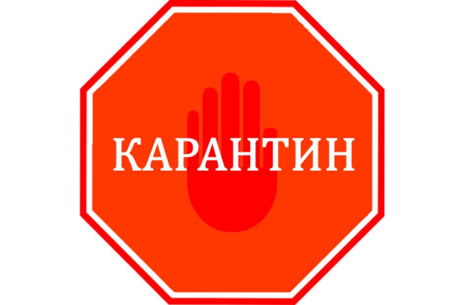 Справка на передвижение по Самарской области