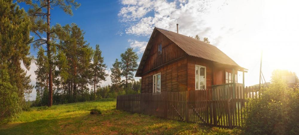 Вологжан проконсультируют на «горячей» линии Вологодского Росреестра  по вопросам «лесной амнистии»
