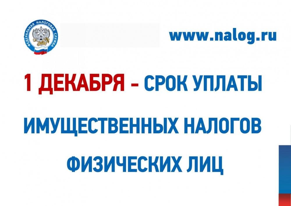 1 декабря - срок уплаты имущественных налогов физических лицй