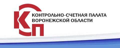 Опросы Контрольно-Счетной палаты Воронежской области