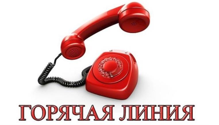 16 октября 2019 года в Кадастровой палате по Тульской области состоится телефонная горячая линия