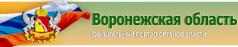 Портал органов власти Воронежской области