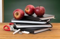 Каким образом осуществляется охрана школ?