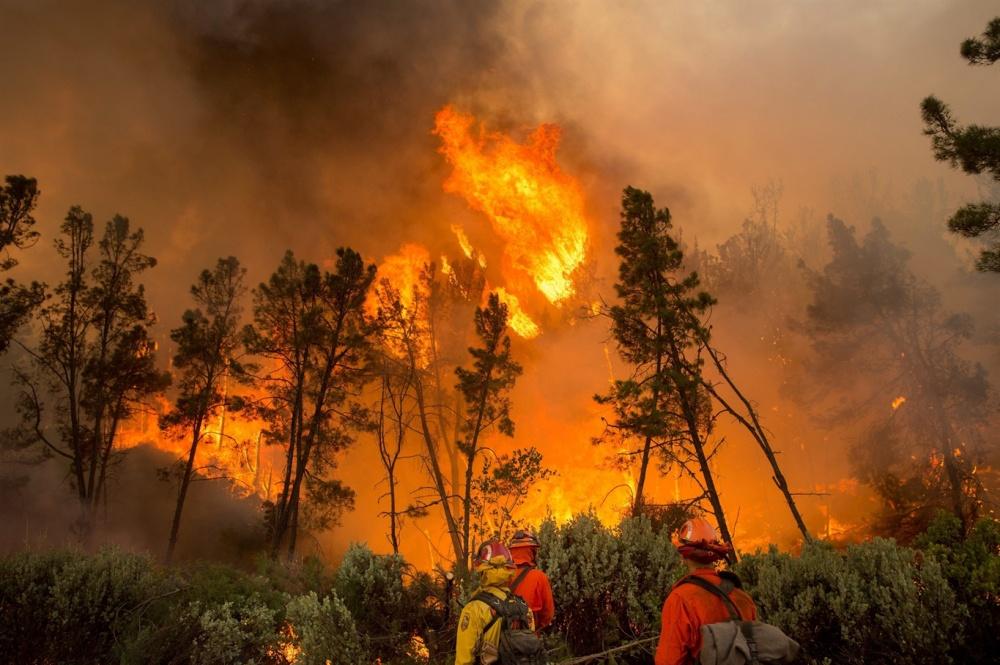 Информация о порядке соблюдения требования пожарной безопасности