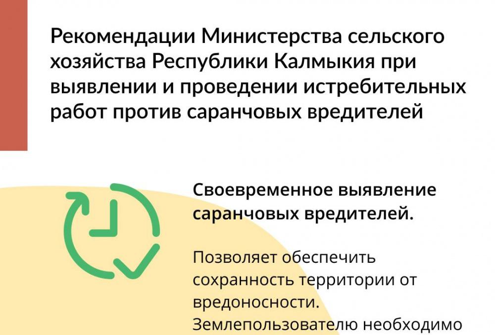 Рекомендации при выявлении и проведении истребительных работ против саранчовых вредителей