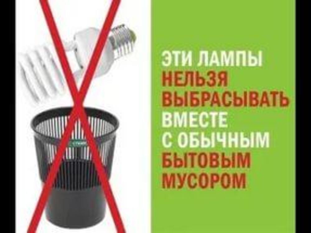 Об утверждении Порядка организации сбора отработанных  ртутьсодержащих ламп на территории  Липовского сельского поселения