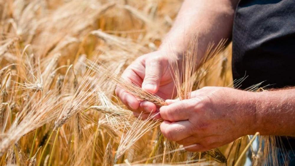 Право на сельскую надбавку к пенсии не будет зависеть от места жительства