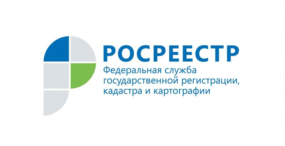 В Росреестре можно подать документы на регистрацию в электронном виде.
