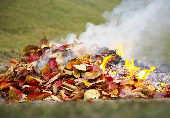 с 8 апреля 2020 года по 15 октября 2020 года установлен особый противопожарный режим на территории Самарской области