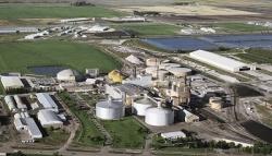 «Сладкая» жизнь: о развитии сахарной промышленности в период пандемии на примере компании ООО «БМА Руссланд»