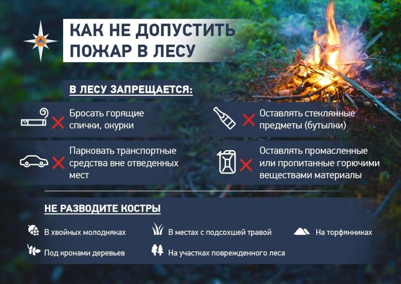 Об установлении особого противопожарного режима в лесном фонде Верхнекамского района