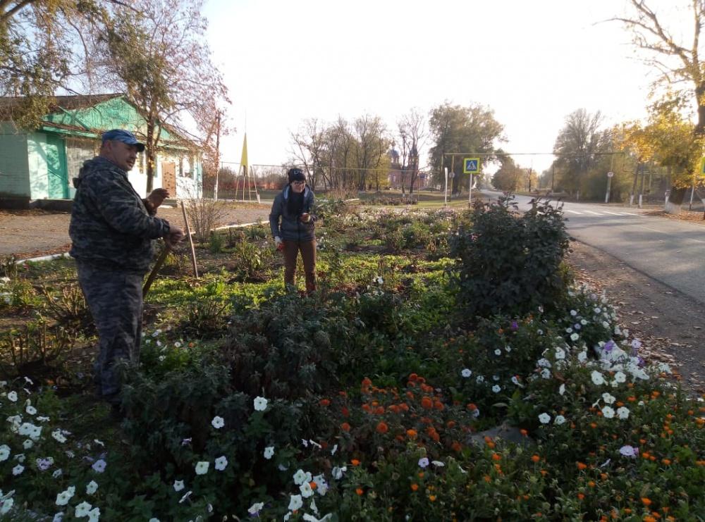 На территории сельского поселения продолжается наведение санитарного порядка