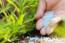 Удобрения – основа повышения плодородия почв