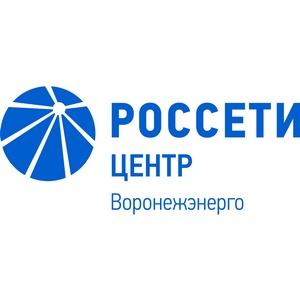 Специалисты «Россети Центр» c начала года пресекли более 900 фактов незаконного энергопотребления в Воронежской области.