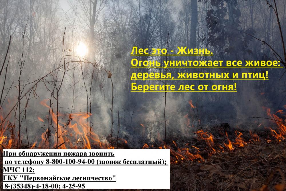 Предупредить возникновение пожара легче, чем ликвидировать его!
