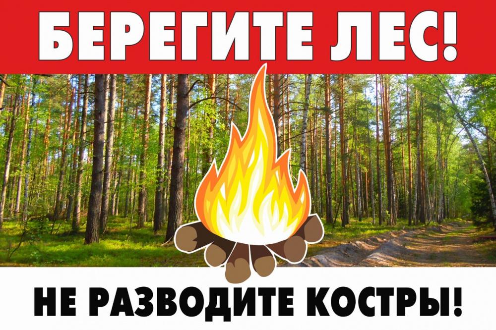 ПРОКУРАТУРА ИНФОРМИРУЕТ! Ответственность за нарушение правил пожарной безопасности в лесах!