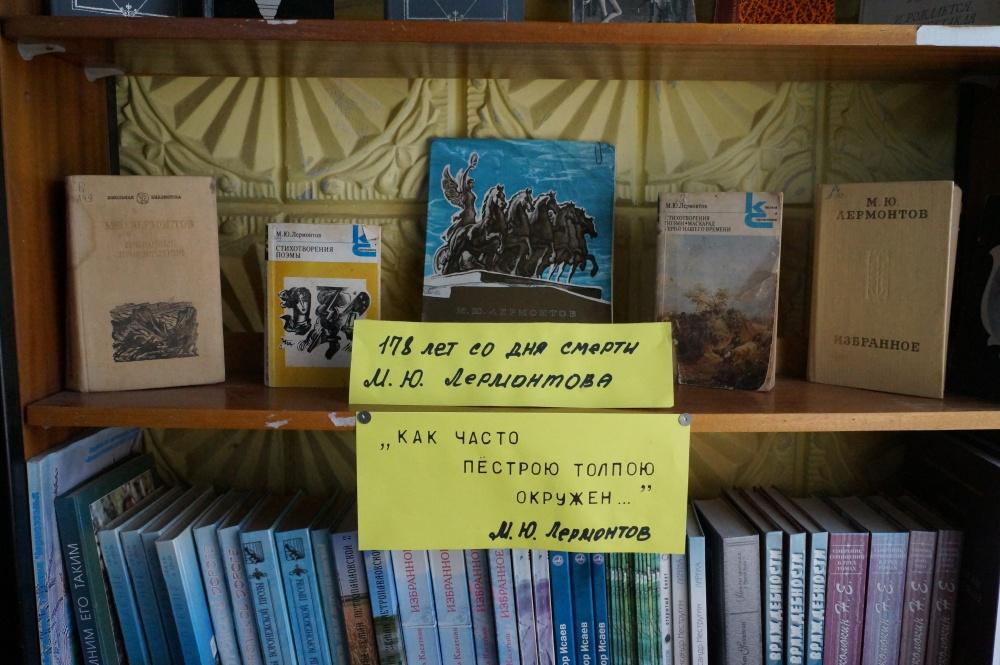 Выставки книг в Индычанской библиотеке