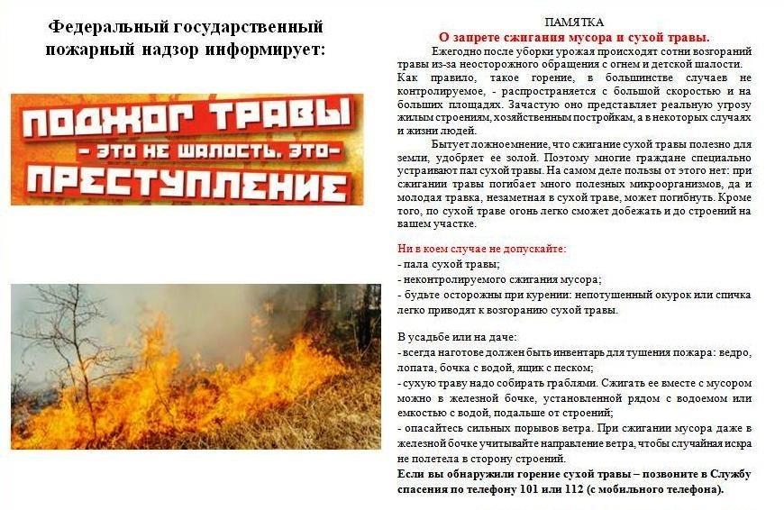 Не допустим ландшафтные пожары!