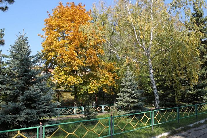 п. Советский осень