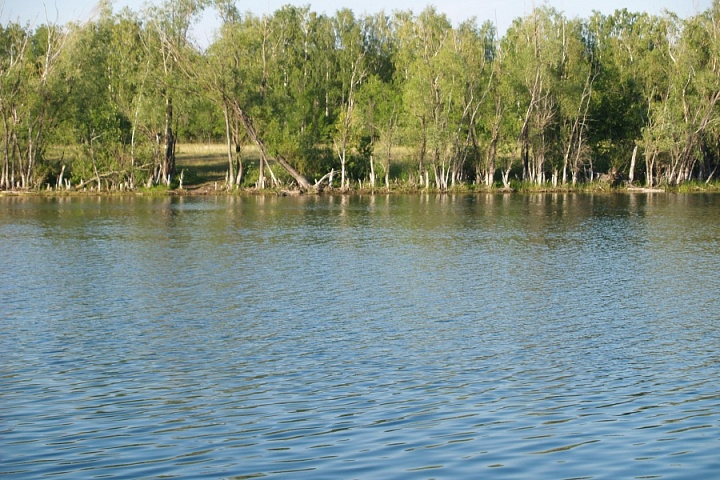 Дубово-Уметское водохранилище
