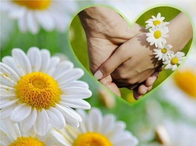 Каждый человек связывает свое счастье прежде всего с семьёй, где тебя любят, всегда поймут и поддержат в трудную минуту.