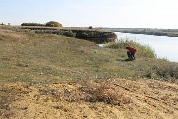 Экологический марафон «Чистый Дон»