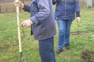 25 октября 2019 года работники Литижской сельской администрации и жители Литижского поселения приняли участие во Всероссийской акции «Живи лес»