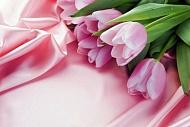 С международным женским днем поздравляем от всей души вас, милые женщины!