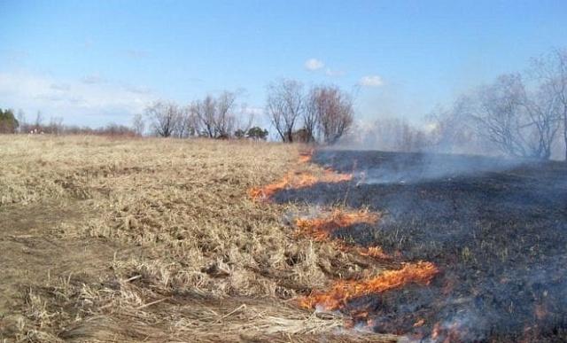Памятка по пожарной безопасности в весенний период пала травы. Ответственность.