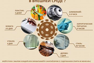 Профилактика  коронавирусной инфекции и других ОРВИ