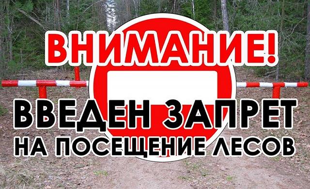 Запрет на посещение лесов!