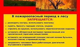 __pozhary-v-lesu.jpg