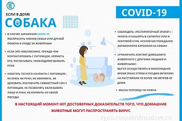 Профилактика коронавирусной инфекции COVID-19