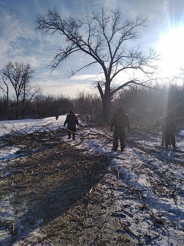 """Инициативной группой ТОС """"Победа"""" проводятся работы по спиливанию и уборке сухих деревьев"""
