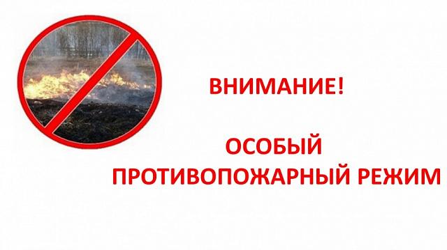 О мероприятиях в период действия особого  противопожарного режима на территории Краснянского сельского поселения
