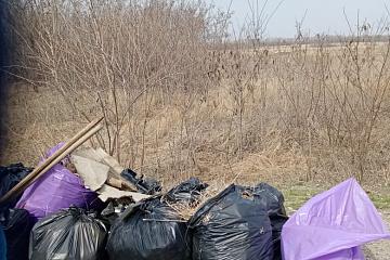 Субботники по  благоустройству территории Краснянского сельского поселения