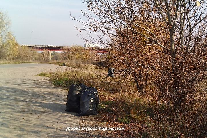 уборка мусора под мостом.JPG